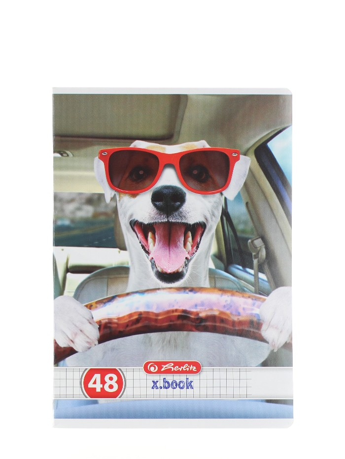 Herlitz Caiet A5 48 File Cod:416 Cool Dog-Patratele imagine produs
