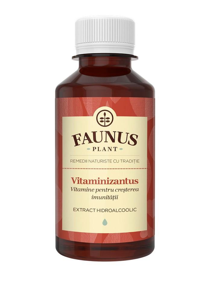 FAUNUS Tinctura Vitaminizantus 200 ml (Vitamine pentru cresterea imunitatii) imagine produs