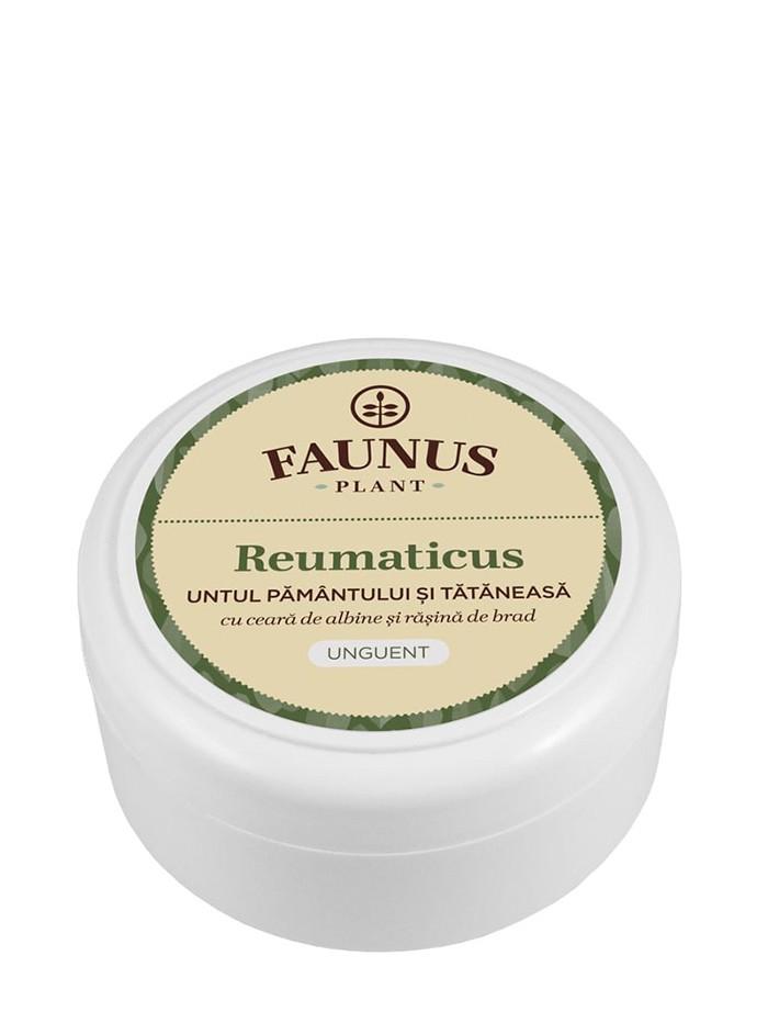FAUNUS Unguent Reumaticus 100 ml Untul Pamantului si Tataneasa imagine produs