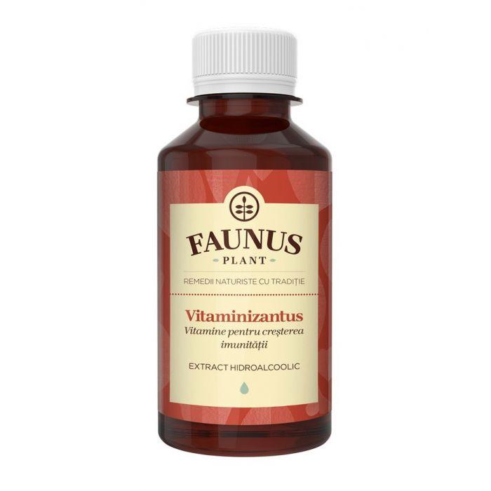FAUNUS Tinctura Vitaminizantus 200 ml (Vitamine pentru cresterea imunitatii)