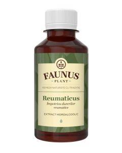 FAUNUS Tinctura Reumaticus 200 ml Impotriva durerilor reumatice