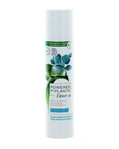 Dove Spray deodorant femei 75 ml Powered By Plants Eucalyptus