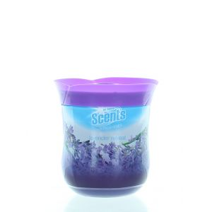 At Home Gel odorizant camera 180 g Lavender Retreat