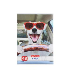 Herlitz Caiet A5 48 File Cod:416 Cool Dog-Patratele